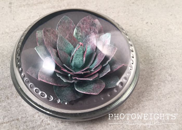 Succulent Paperweight